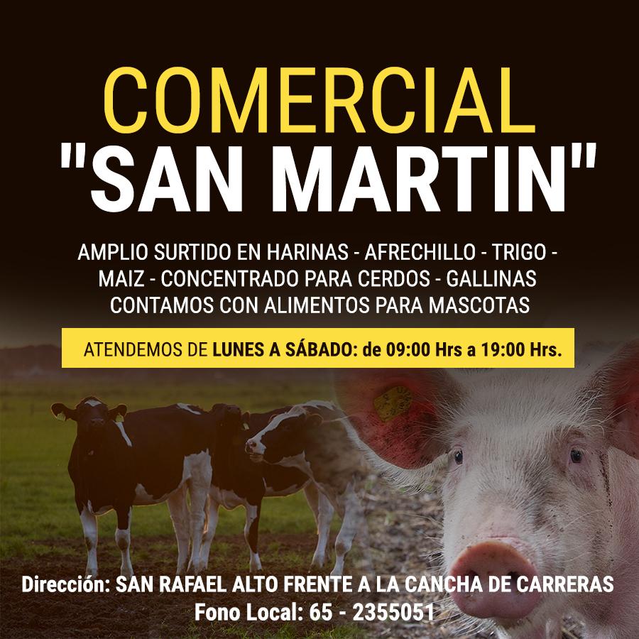 Comercial San Martin Calbuco