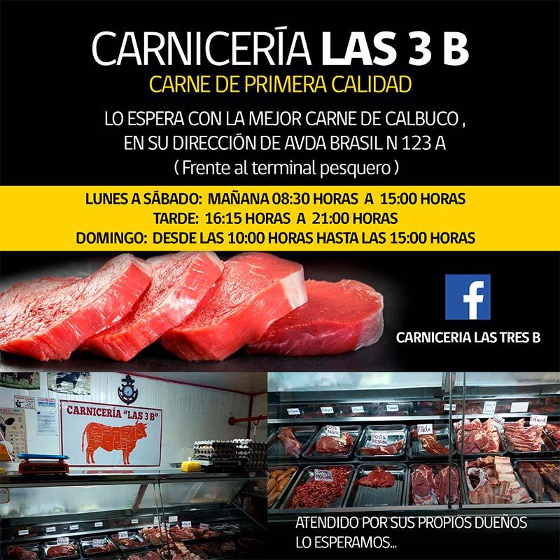 Carnicería las 3B
